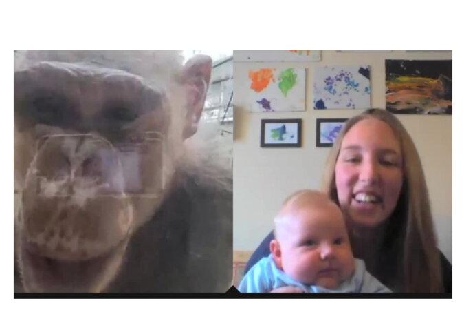 Die Frau mit dem Kind und ein Schimpanse. Quelle: Screenshot YouTube