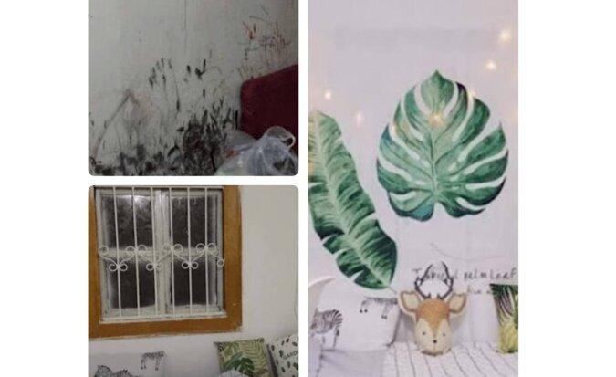 """""""Ich konnte mich darin nicht hineinfinden"""": eine Studentin verwandelte ein schmuddeliges Wohnheimzimmer in ihr Traumzimmer"""