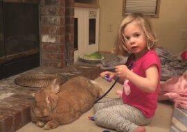 Kleines Mädchen. Quelle: Screenshot YouTube