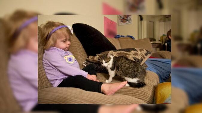 Das Mädchen und die Katze. Quelle: zen.yandex