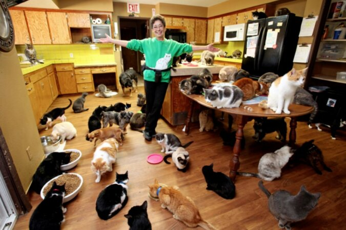 Wie sieht das Haus einer Frau aus, die 1100 Katzen untergebracht hat