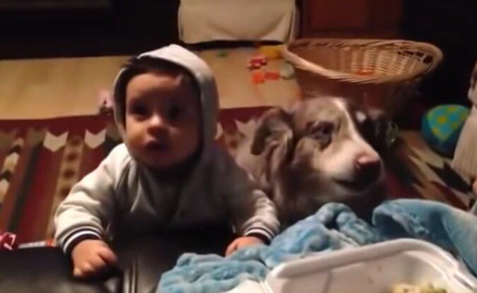 Hund und Baby. Quelle: Screenshot YouTube