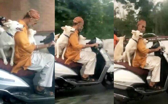 Der Mopedfahrer. Quelle:dailymail.co.uk