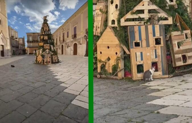 Weihnachtsbaum und Katzen. Quelle: Screenshot YouTube