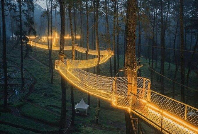 """""""Magischer Weg"""": Die Hängebrücke im Wald ist zu einem beliebten Ort der Touristen geworden"""