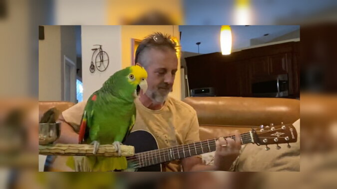 Der Mann und der Vogel. Quelle: wi-fi.com