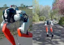 Ein zweibeiniger Roboter. Quelle:dailymail.co.uk