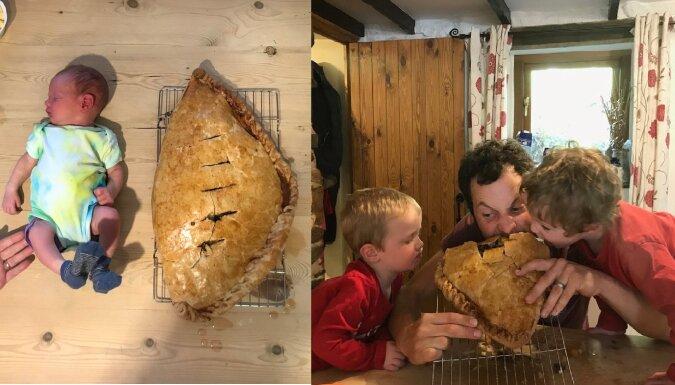 Die Pastete. Quelle:swns.com