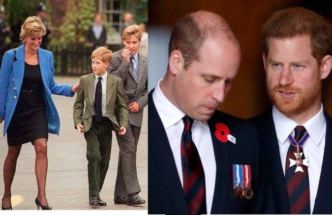 Prinz William und Prinz Harry. Quelle:dailymail.co.uk