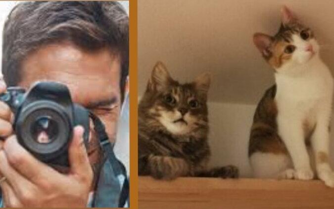 Ein Mann und zwei Katze. Quelle: tehno-rating