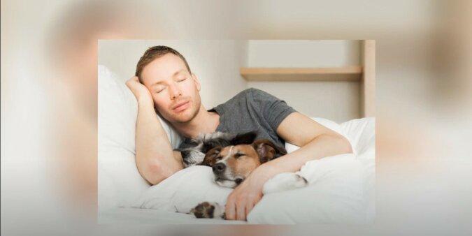 Mensch und Hund. Quelle: Screenshot YouTube