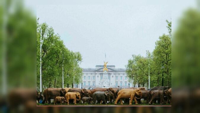 Elefanten neben dem Buckingham Palace. Quelle: travelask