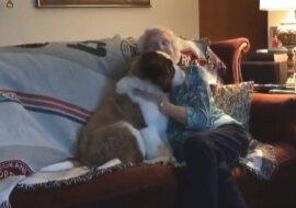 Alte Witwe lebte allein, bis sie einen neuen Freund unter ihrer Tür fand