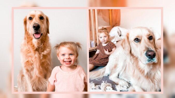 Der Hund Marchal und Macy. Quelle: instagram