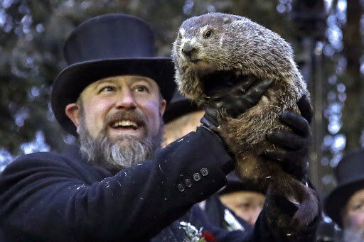 """""""Murmeltiertag"""": Murmeltier Punxsutawney Phil sagte die Länge des Winters voraus"""