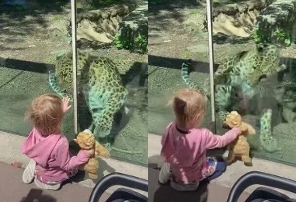 Rylee undder Leopard. Quelle:dailymail.co.uk
