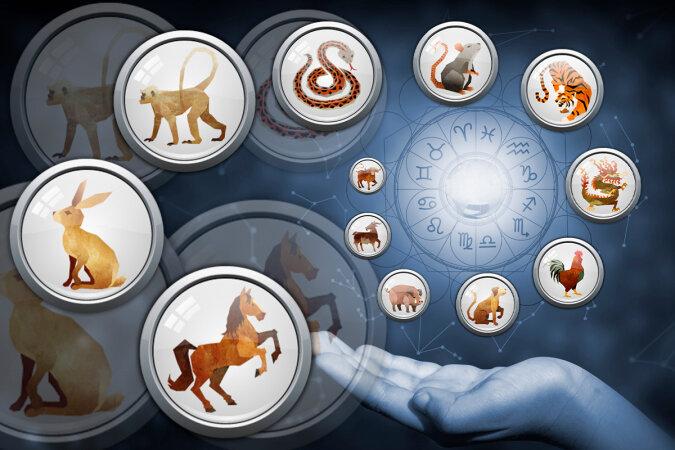 """""""Was der Metall-Büffel bringt"""": Der Astrologe erzählte, welche Tierkreiszeichen vom Eintritt des neuen chinesischen Jahres profitieren werden"""