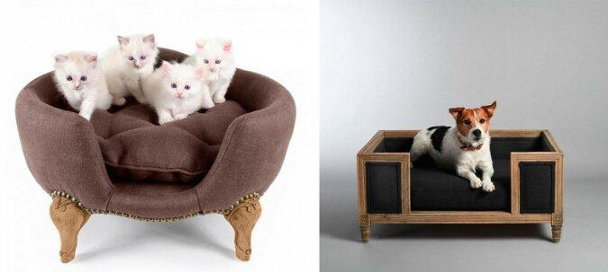 """""""Man kann nicht verbieten, schön zu leben"""": Luxuriöse Möbel für Katzen und Hunde, die mehr kosten, als einige Menschen für eigene Betten ausgeben"""