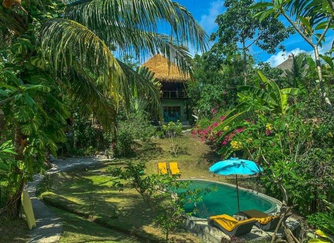 """""""Baumhaus"""": Wie das begehrteste Haus im Inneren aussieht, wo eine Übernachtung 78 Dollar kostet"""