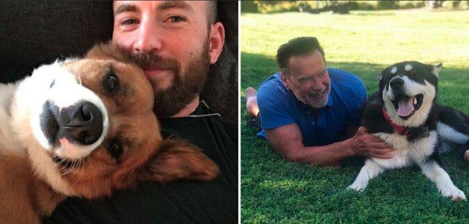 Tierliebhaber: Prominente, die Tiere aus Tierheimen nach Hause nahmen oder vom Straßenleben retteten