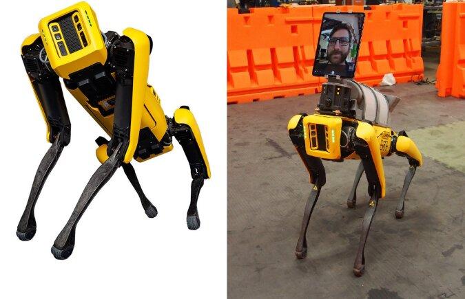 Der mechanische Hund.Quelle:dailymail.co.uk