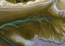"""""""Kunst der Natur"""": Worin das Geheimnis des erstaunlichen baumförmigen Musters besteht, das auf dem Fluss erschien"""