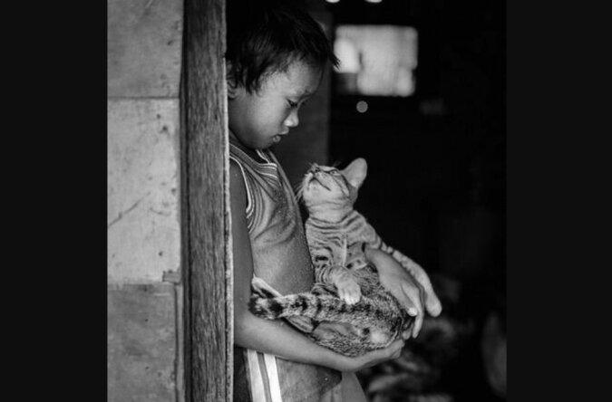 """""""Katzen als Wärme für die Seele"""": ein Fotoprojekt, das die berührende Liebe von Tieren und Besitzern zeigt"""