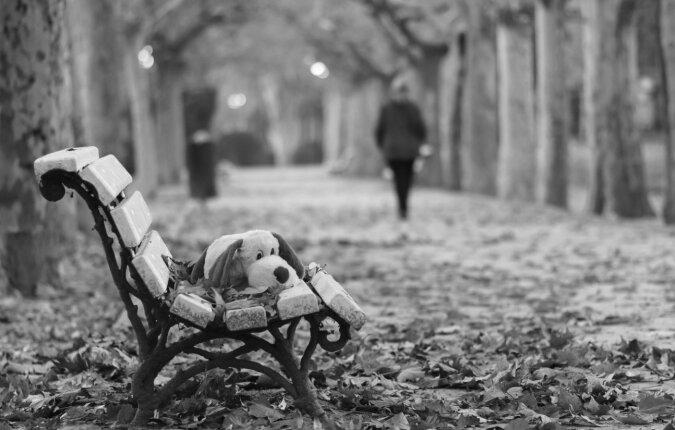 Der ausgesetzte Welpe war kaum als Hund zu erkennen, aber Liebe und Fürsorge veränderten ihn