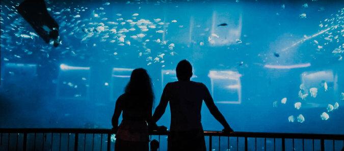 Ozeanarium. Quelle: Screenshot YouTube