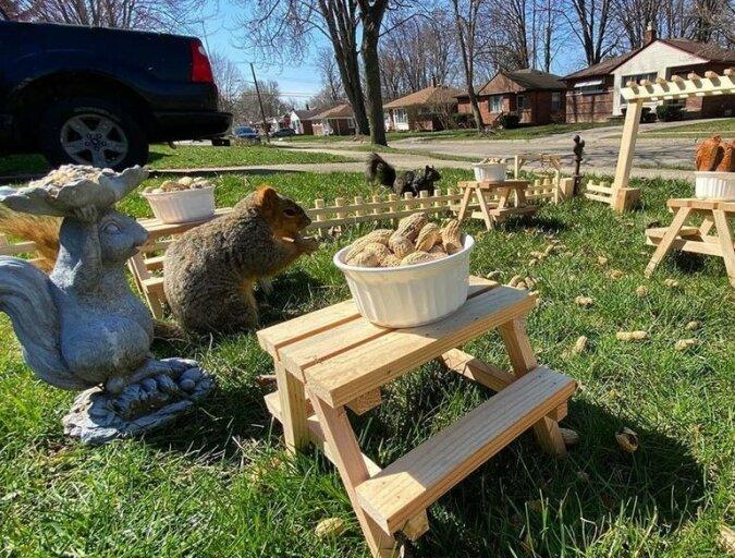 """""""Chip und Dale beeilen sich zur Rettung"""": eine Frau eröffnete ein Restaurant für Erdeichhörnchen mit Tischen und sogar einem Klavier"""