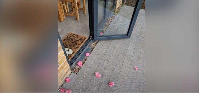 Die Frau fand schließlich heraus, wer ein Geheimverehrer war und Blumen vor ihrer Tür hinterließ