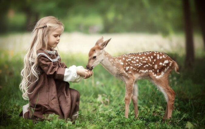 Ein winziges Rehkitz näherte sich dem Mädchen und bat um Hilfe: Das Mädchen ließ das Tier nicht im Stich