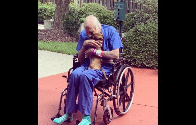 Schutzengel: Ein kleiner Chihuahua rettete einen Veteranen, der Herzprobleme hatte
