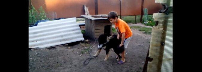 Kind und Hund. Quelle: Screenshot YouTube
