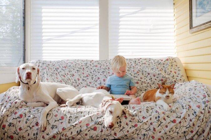 Ein kleiner Mensch mit einem großen Herzen: Der Hund hat vor jedem Angst, außer seinem kleinen Freund
