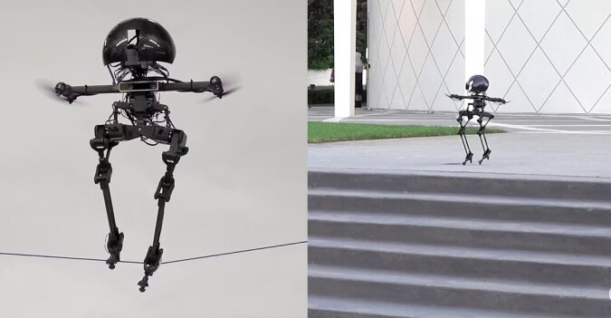 Ein Mini-Roboter. Quelle:dailymail.co.uk