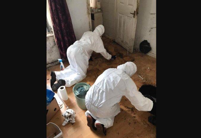Ein Reinigungsdienst putzte eine sehr verschmutzte Wohnung eines alten Witwers und nach der Reinigung war sie nicht wiederzuerkennen