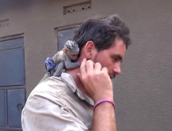 Ein Mann hat einen kleinen Affen aus Feuer gerettet und sie wollte ihn nicht mehr verlassen