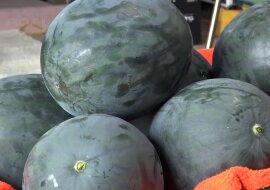 Wassermelone. Quelle: Screenshot YouTube