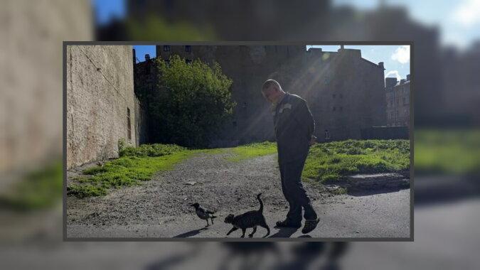 Der Mann, der Vogel und die Katze. Quelle: travelask