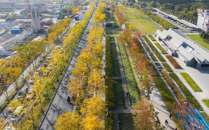 """""""Zurück zur Natur"""": Der ehemalige Flughafen wurde in den Park mit 2227 Bäumen verwandelt"""