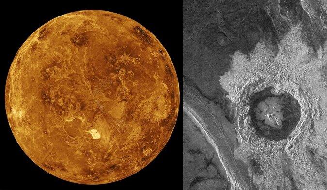 Studium der Venus. Quelle:dailymail.co.uk
