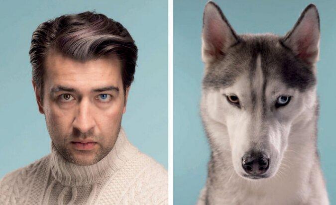 Wie zwei Wassertropfen: Der Fotograf schuf ein Fotosession mit Hunden und ihren Besitzern