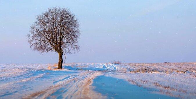 Winter. Quelle: Screenshot YouTube