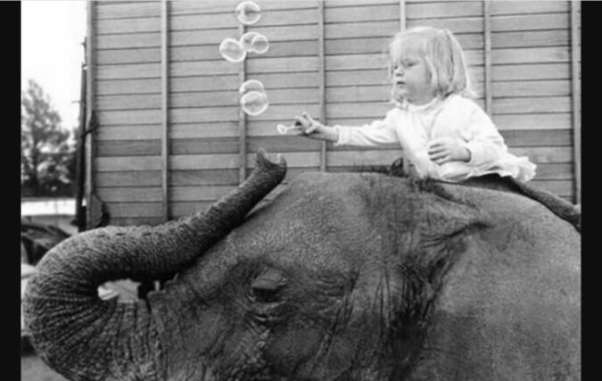Ein Elefant und ein kleines Mädchen. Quelle: travelask