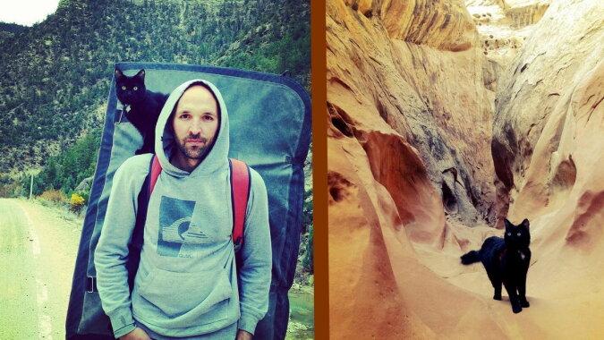 Der Mann und die Katze. Quelle: zen.yandex