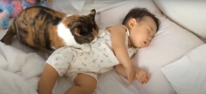 Katze und Baby. Quelle: Screenshot YouTube