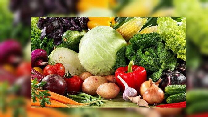 Gemüse. Quelle: kidpassage