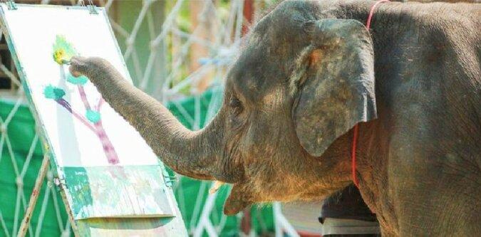 Wildbahn: Fakten über das Leben der Tiere in der natürlichen Umgebung