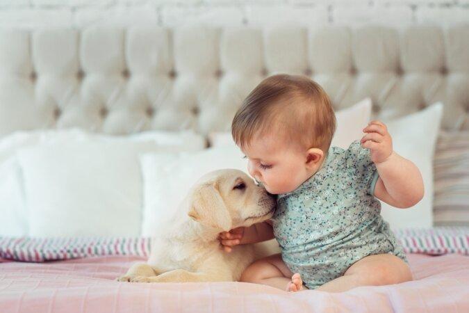 """""""Erstes Treffen"""": Die Eltern beschlossen, dem Baby einen Hund zu schenken, und es war die Liebe auf den ersten Blick"""